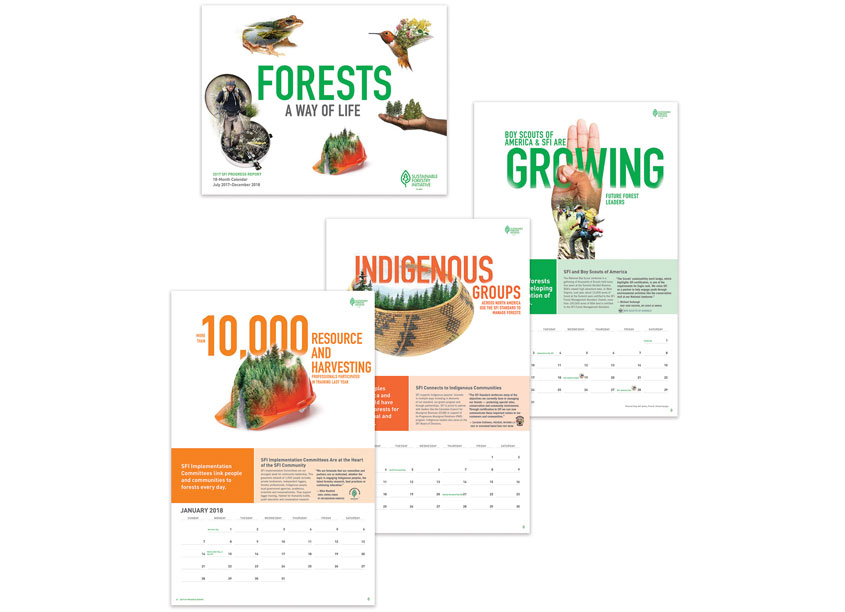 Sustainable Forestry Initiative  SFI 2017 Progress Report