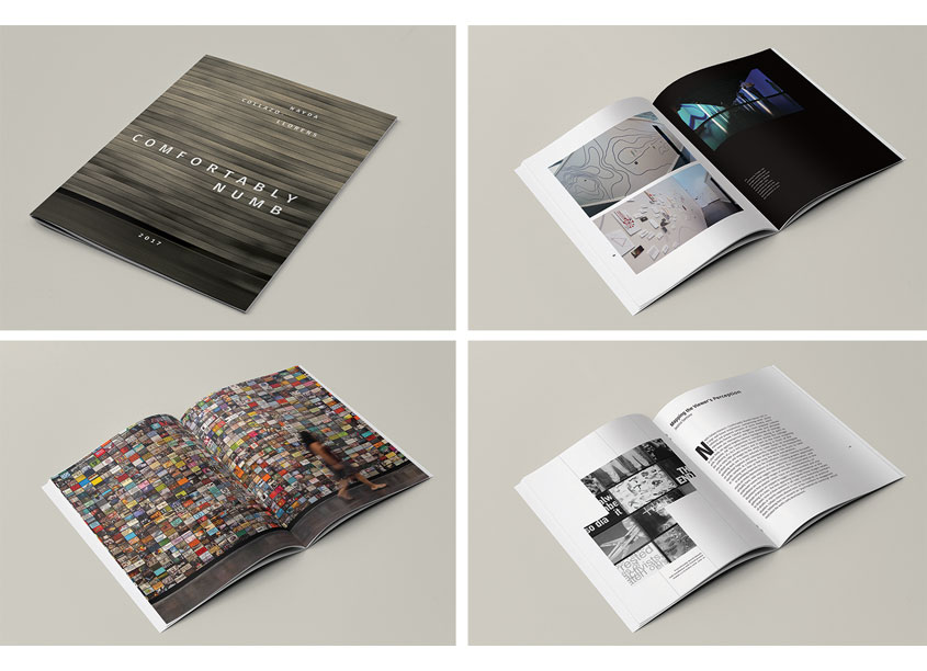 Comfortably Numb Exhibition Catalog by Grand Valley State University