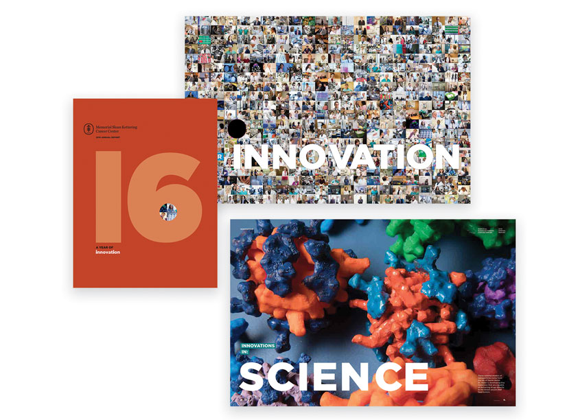 Memorial Sloan Kettering and Ideas on Purpose  2016 Annual Report - A Year of Innovation
