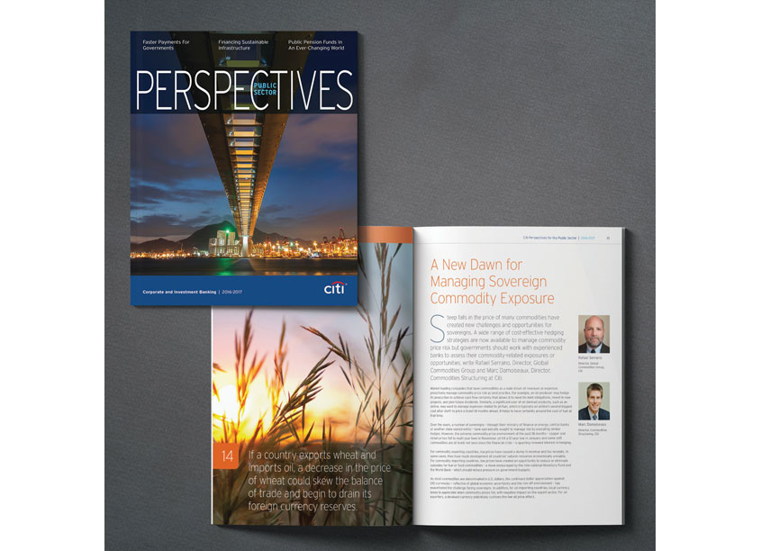 Citi 2016-2017 Public Sector Perspectives Magazine by Citi