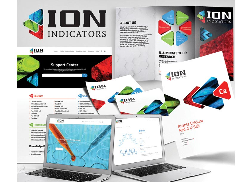 Gladiator Consulting Ion Indicators Brand Identity