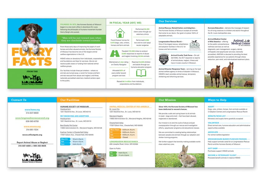Furry Facts Brochure by Stan Gellman Graphic Design