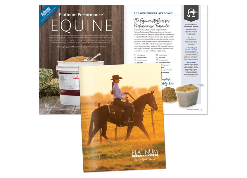Equine Catalog by HB Design