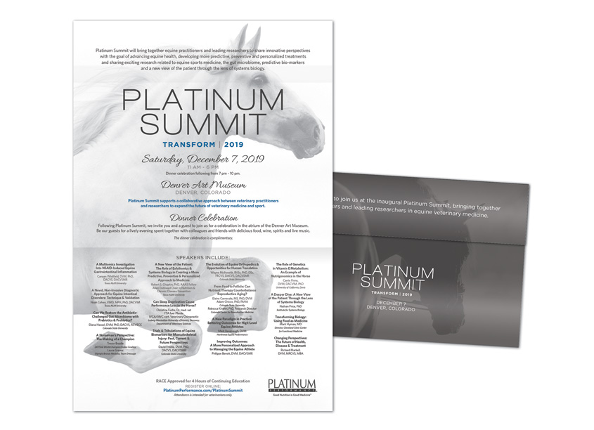 Platinum Summit Invitation by HB Design