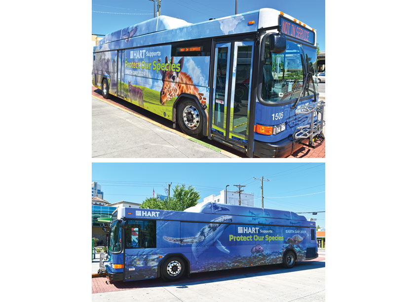 Hillsborough Area Regional Transit Authority HART Earth Day Protect Our Species Bus Graphics
