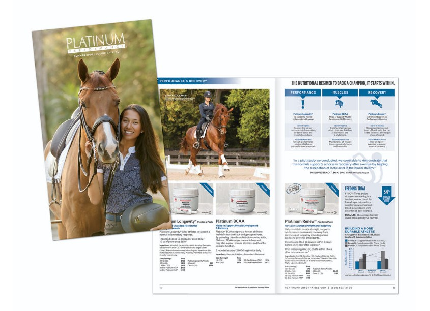 HB Design Equine Mini Catalog