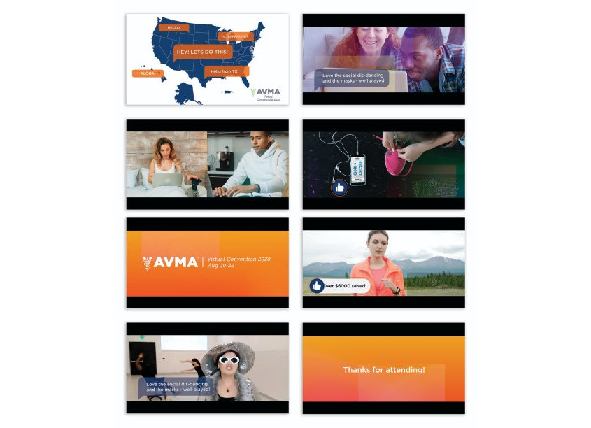 American Veterinary Medical Association (AVMA) AVMA Virtual Convention In 90 Seconds