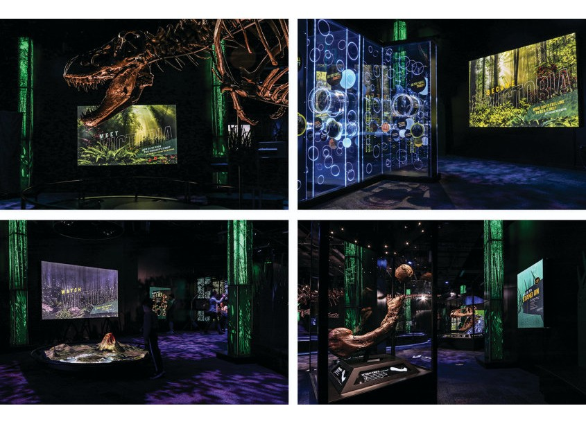 Victoria the T.rex: The Exhibition Graphics by Samantha Osborne Design
