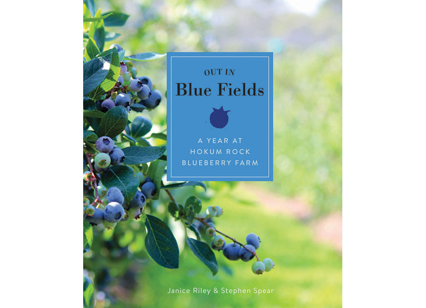 Out In Blue Fields: A Year At Hokum Rock Blueberry Farms by Schiffer Publishing, Ltd.
