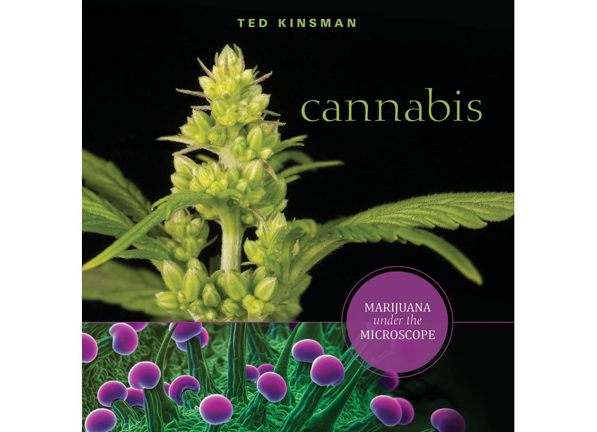 Schiffer Publishing, Ltd. Cannabis: Marijuana Under The Microscope