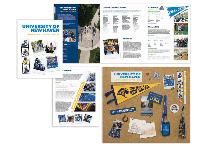 University of New Haven Student Experience Brochure & Poster