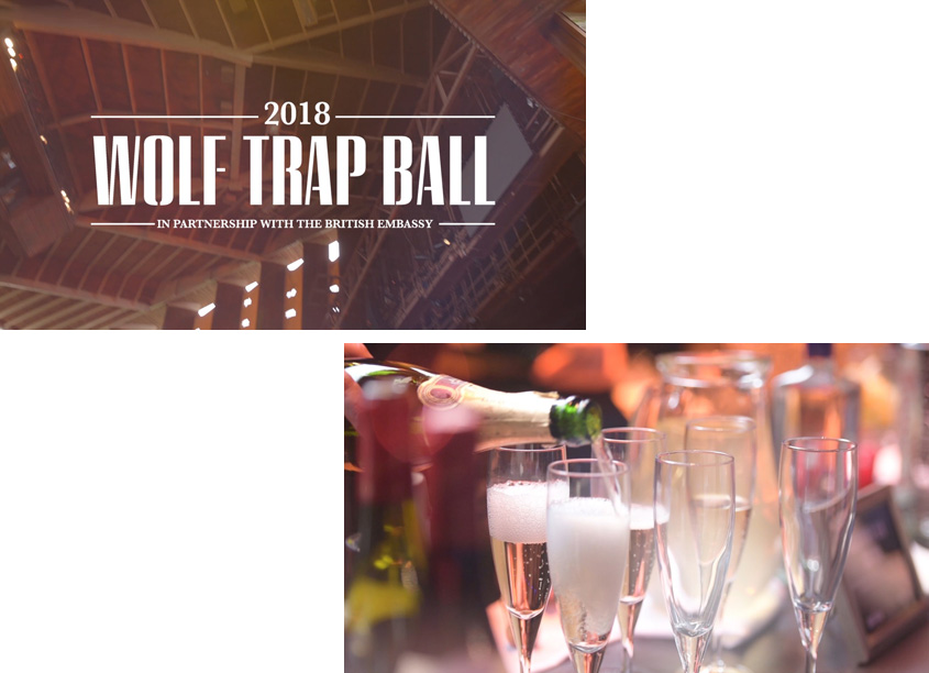 Wolf Trap 2018 Ball Promotional Video by Wolf Trap Creative