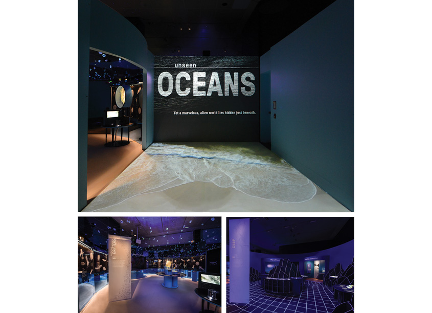 American Museum of Natural History Unseen Oceans Environmental Graphics