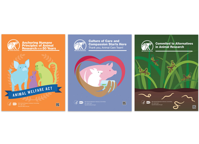 National Institutes of Health (NIH) Medical Arts Educational Poster Series