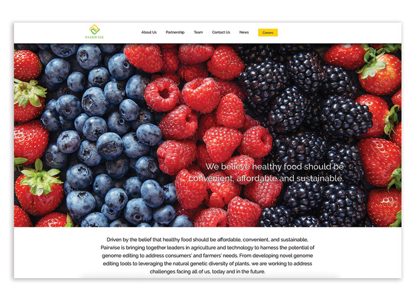 Pair Wise Website by Miles Technologies
