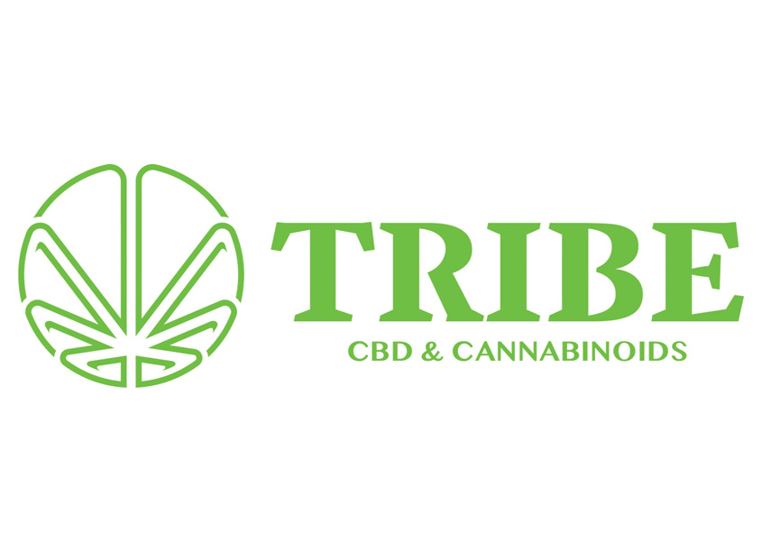 Tribe Logo Design by Gladiator Consulting LLC