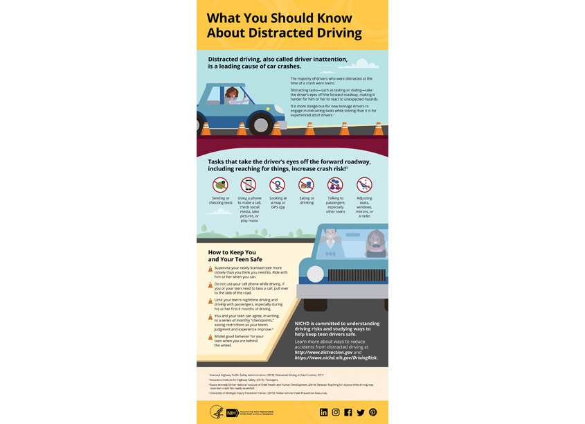 Palladian Partners Distracted Driving Infographic