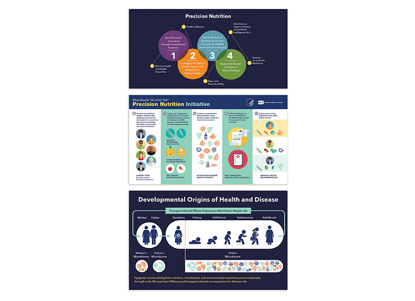 NIDDK Precision Nutrition Infographics by National Institutes of Health (NIH) Medical Arts