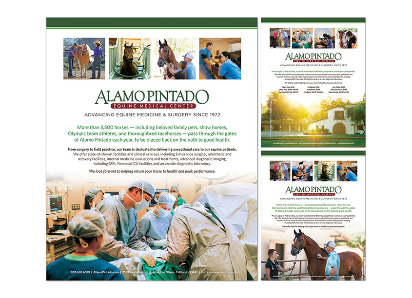 Alamo Pintado Advertising Campaign by HB Design